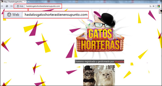gatos-horteras-dominio-blog-hostalia-hosting